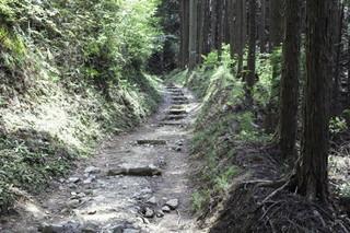 高野山町石道3535.JPG